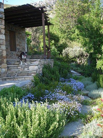 Mediterranean Garden House - PLANT LIST