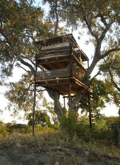 Umlani - another K2C lodge committed to the principles of Responsible Tourism Umlani Treehouse, Kruger National Park. If you need a Safari recommendation then this IS IT! Pack your mozzie repellent and book your ticket. '