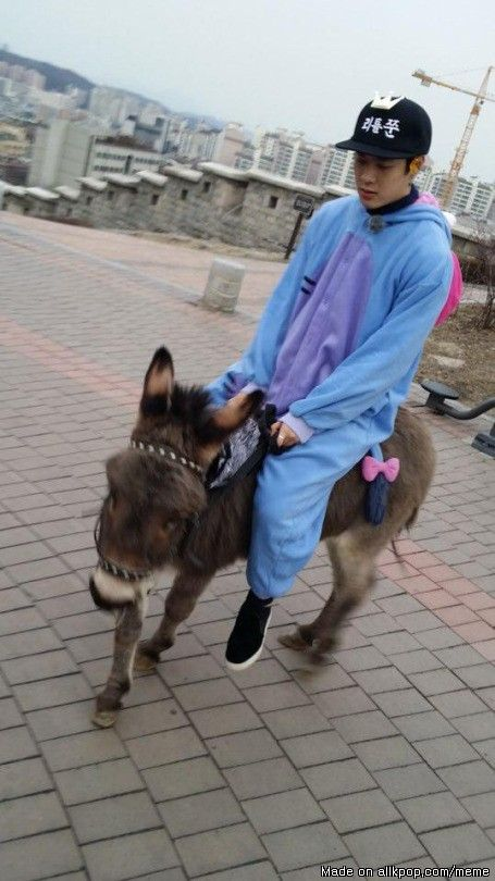 Typical Jackson Wang. Riding his B-day donkey and wearing a eeyore onesie.