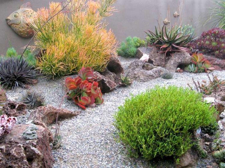 Trend Japanischer Garten anlegen Sukkulente und Pflanzen