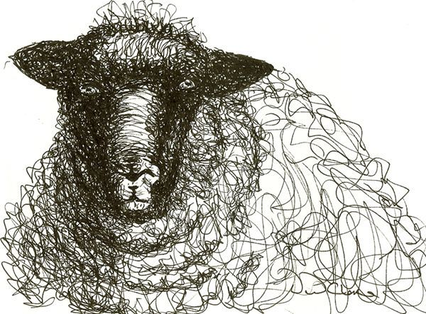 Henry Moore Sheep Drawing - Pictify - your social art network
