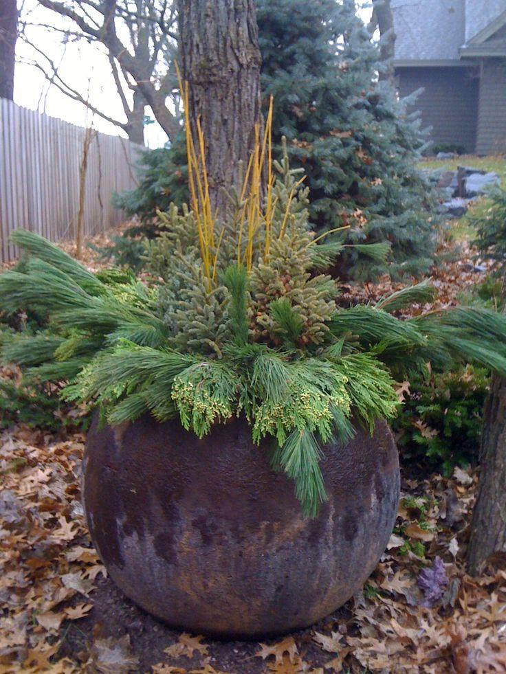 Winter Planter, Yellowtwig Dogwood, Incense Cedar, Natural, Garden Design, www.sarahscottagecreations.com