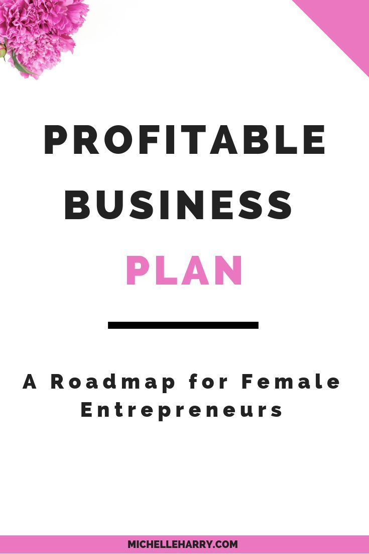 Profitable Business Plan A Roadmap For Female Entrepreneurs With