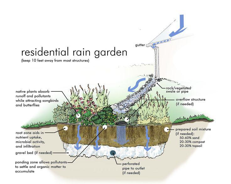 Photos of Rain Gardens   Rain Garden Graphic Simulation from University of Nebraska extension