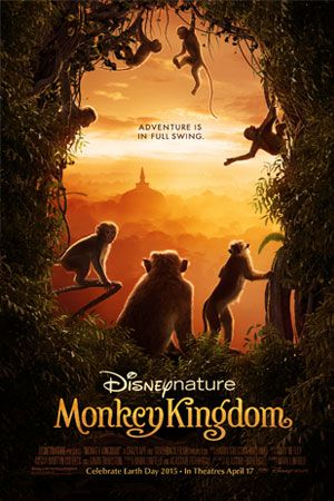 Visit the official website for Disneynature's Monkey Kingdom to watch the trailer and browse images from the movie.