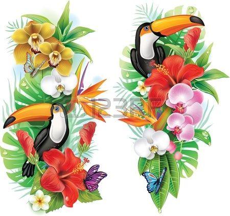 Тропические цветы, тукан и бабочки. Фото со стока - 21214110