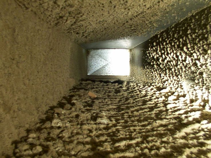17 Best Images About Attic Cleaning Information On