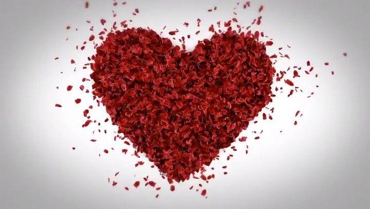 """43.9 mil Me gusta, 904 comentarios - Alejandro Sanz (@alejandrosanz) en Instagram: """"Cuida lo más valioso que tienes, tu corazón... ❤ #DiaMundialDelCorazon #ComparteTuPoder"""""""