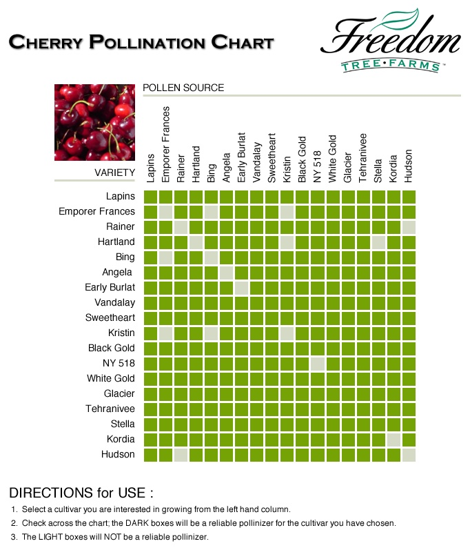 cherry pollination chart espalier and trees pinterest drip system diagram ford f700 brake system diagram #15