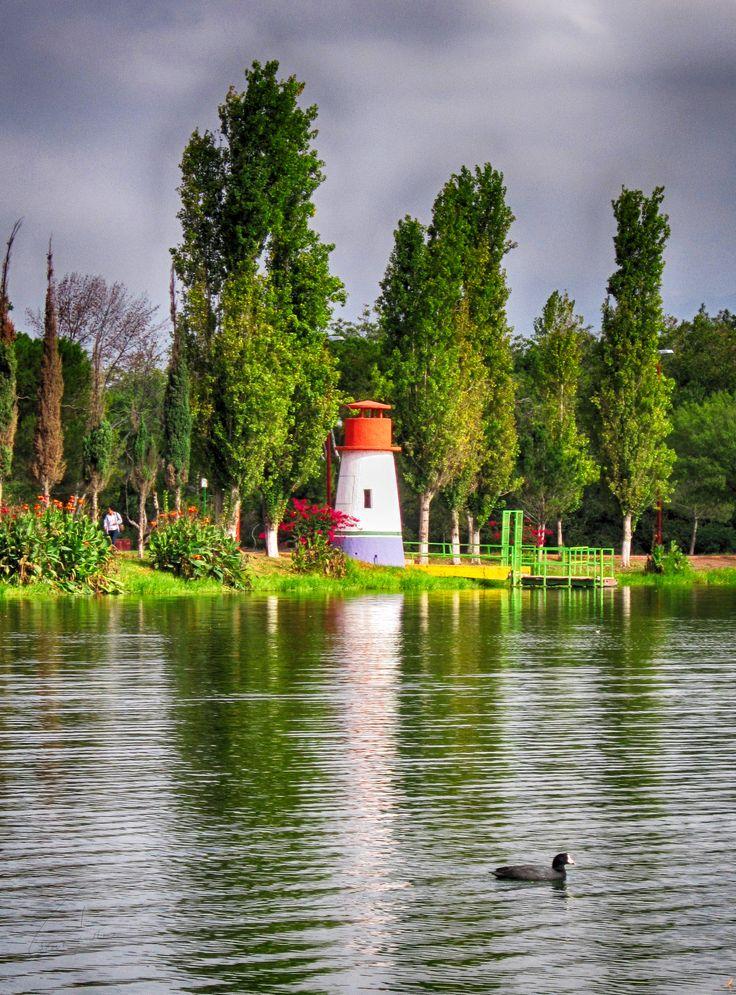 Lago de la ciudad deportiva - Saltillo, Coah.