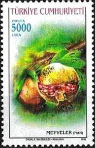 1993 Pomegranates
