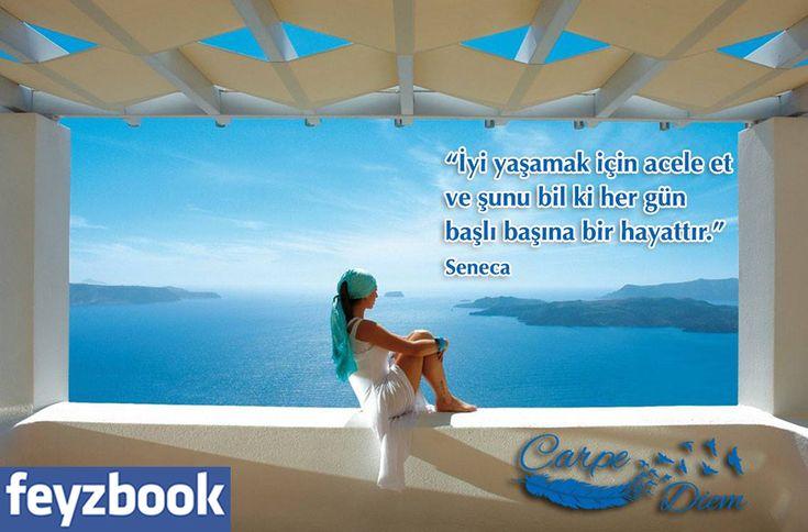 """""""İyi yaşamak için acele et ve şunu bil ki her gün başlı başına bir hayattır."""" Seneca"""