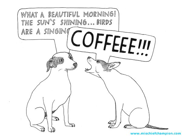 This is what I am like in the morning...and I mean the dog on the right.