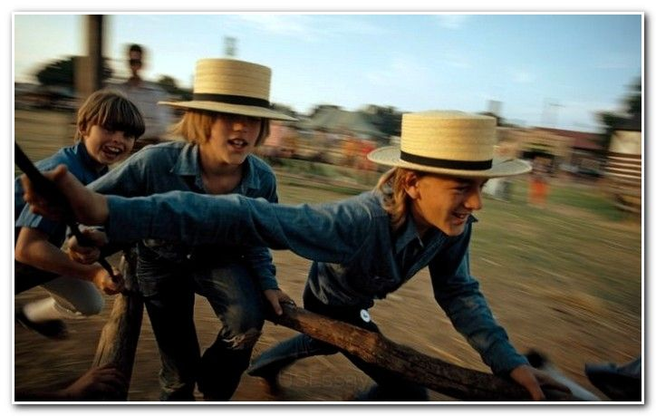 Amish essay introduction