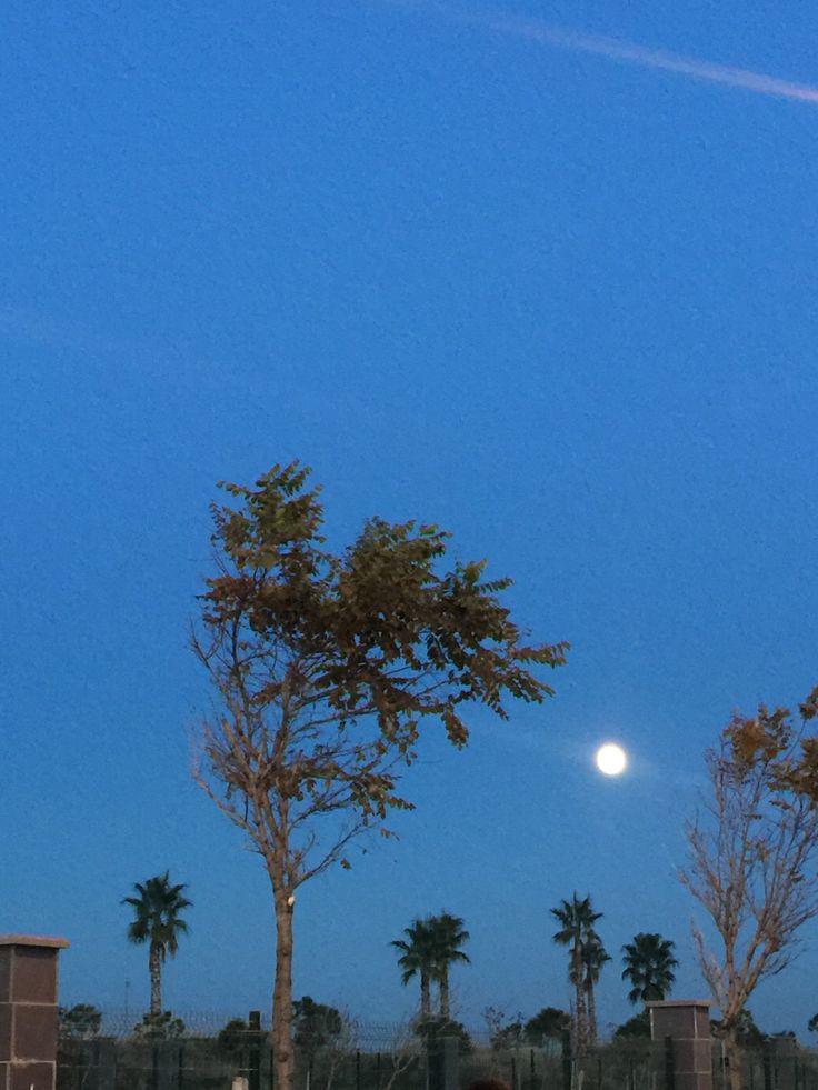 Samsun- Gökyüzü ve Ay