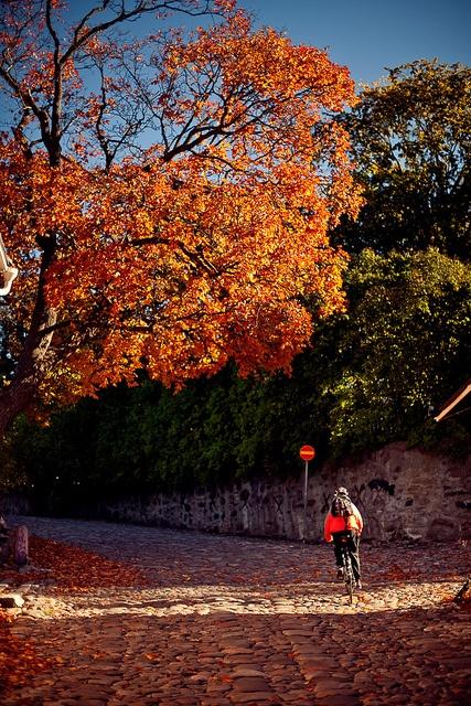 Biking in Porvoo, Eastern Uusimaa by Visit Finland, via Flickr