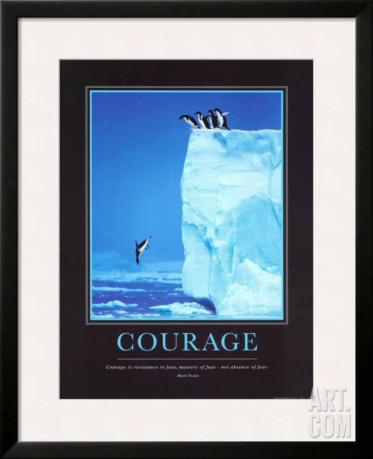 Courage, by Steve Bloom