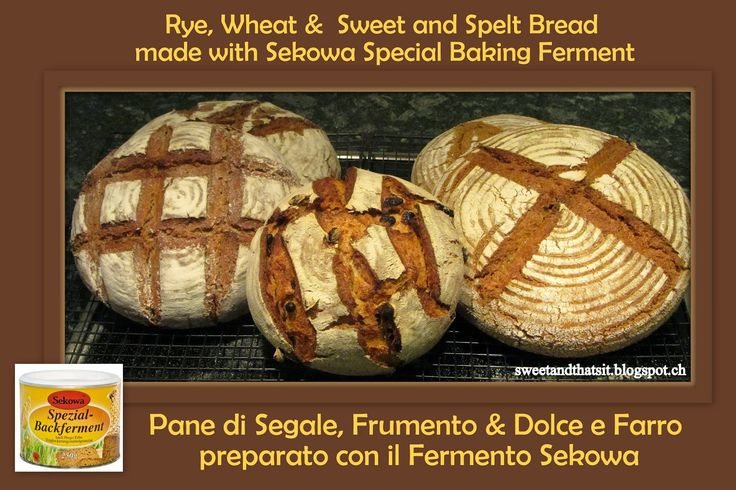 Sweet and That's it: Sekowa Special Baking Ferment: The Starter - Il Lievito Naturale con il Fermento Sekowa