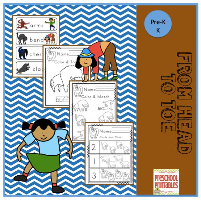Book: From Head to Toe Printable