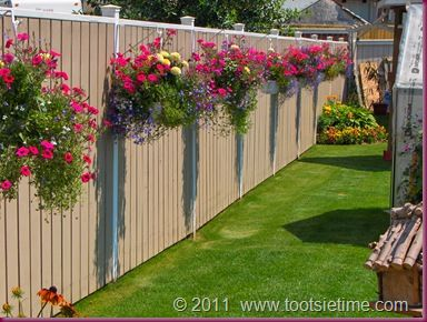 hanging baskets on a fence...less expensive (and less work) option than rows of shrubs/plants etc