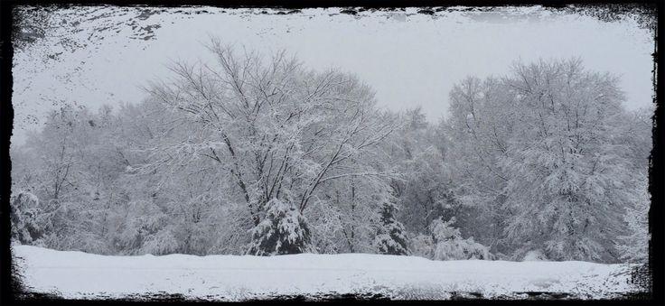 Central NJ Snow storm