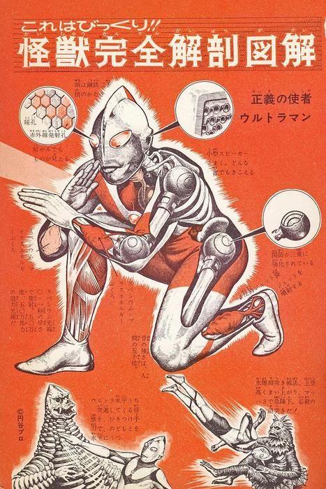 Ultraman Anatomy