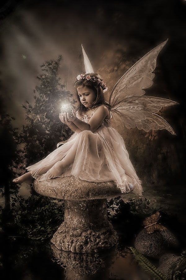 """""""If you should catch a fairy and place it in a jar, be sure to treat it kindly and do not take it far""""♬"""