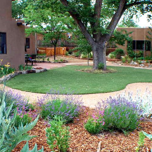 Fake the lawn? - Sunset.com  - perfect for high heat areas with water shortage - like Arizona!