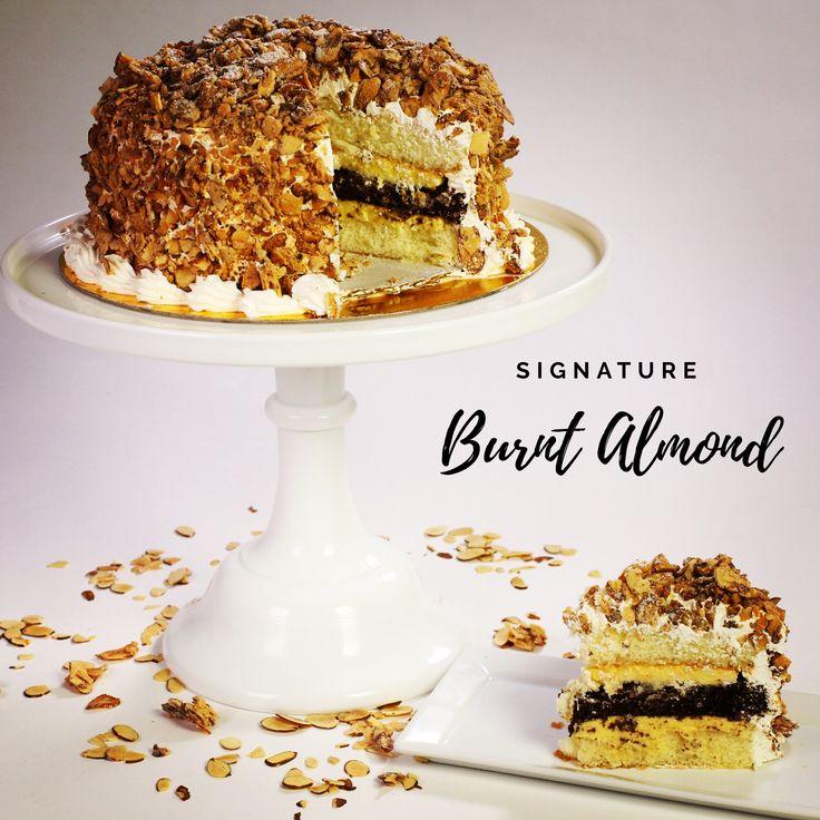 Burnt almond cake almond cakes cake bakery cafe