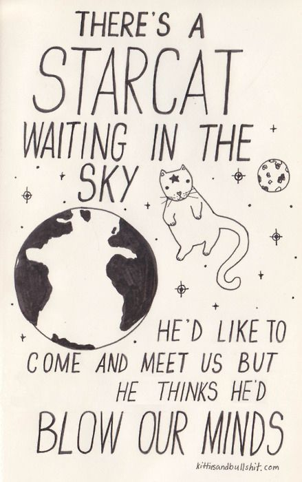 There's a STARCAT waiting in tha sky he'd like to come and meet us but he thinks he'd blow our minds