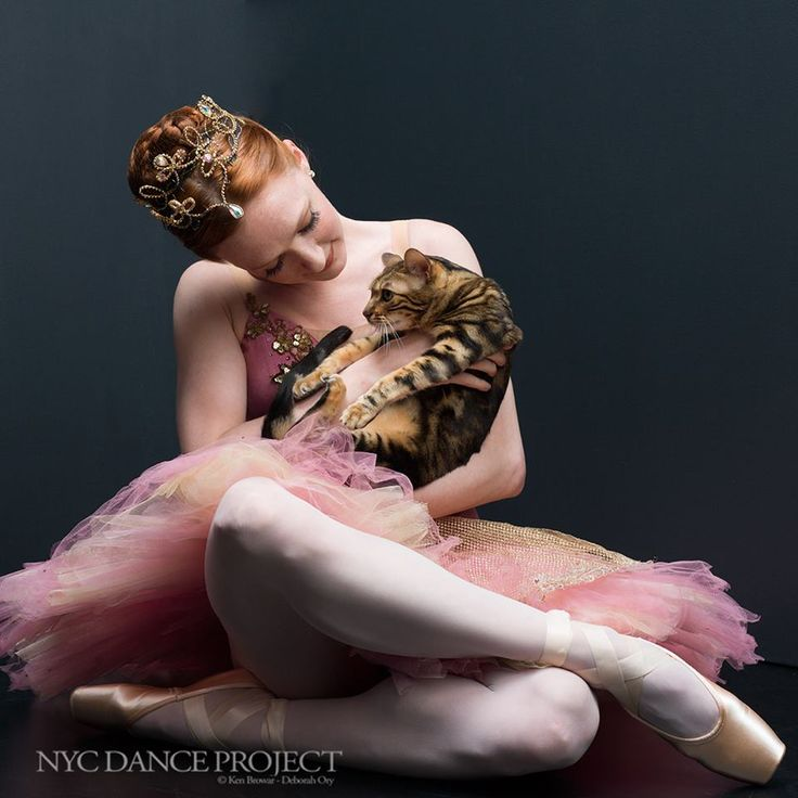Lilly the cat and Gillian Murphy, Principal dancer at American Ballet Theatre, discussing technique | Photo © NYC Dance Project