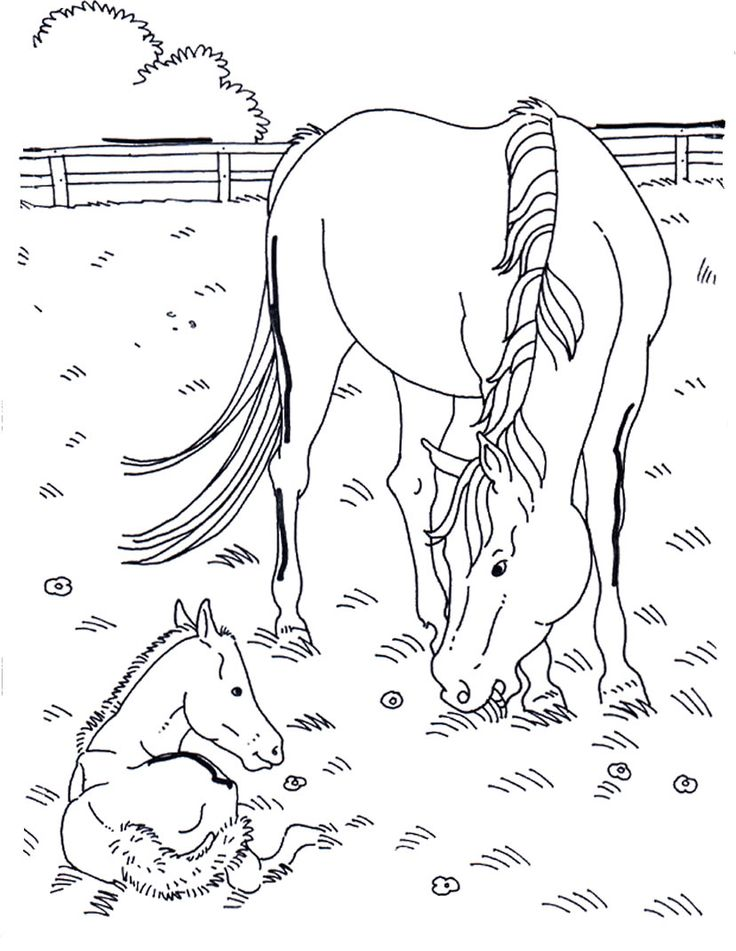 79 best western coloring page images