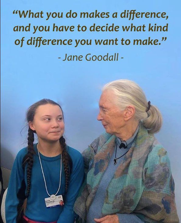 News About Womeninscience On Twitter Save Earth Jane Goodall Inspirational People