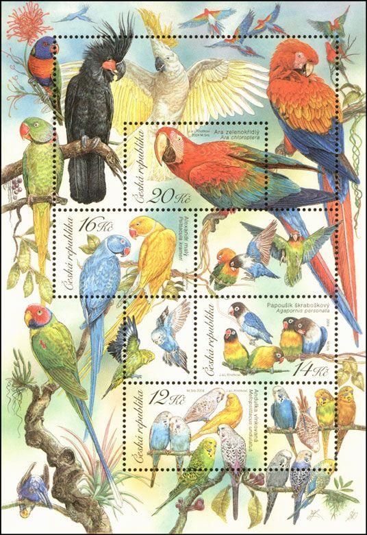 Andulka vlnkovaná; Papoušek škraboškový; Alexandr malý; Ara zelenokřídlý