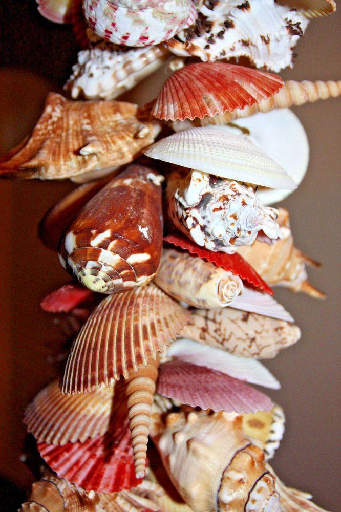 (4) Hand Tied Shelly Mobile,Beach Decor,Seashell Garland,Nautical Decor,Tiki Bar #Unbranded