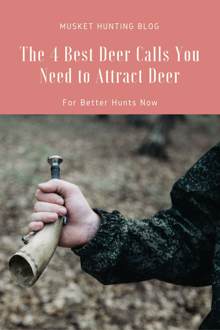Are you wondering how to attract deer successfully? Try the best deer calls! Read on to find out the top four best ones to invest in today.