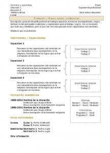 Currículum Vitae: Modelo Funcional 2