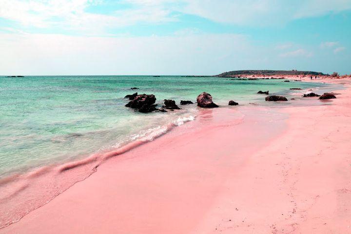 ピンクサンドビーチ/バハマ