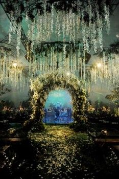 Twilight wedding arch great for an outdoor forest wedding
