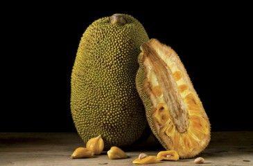 Джекфрут - описание хлебного дерева с фото, полезные свойства и противопоказания, состав и калорийность