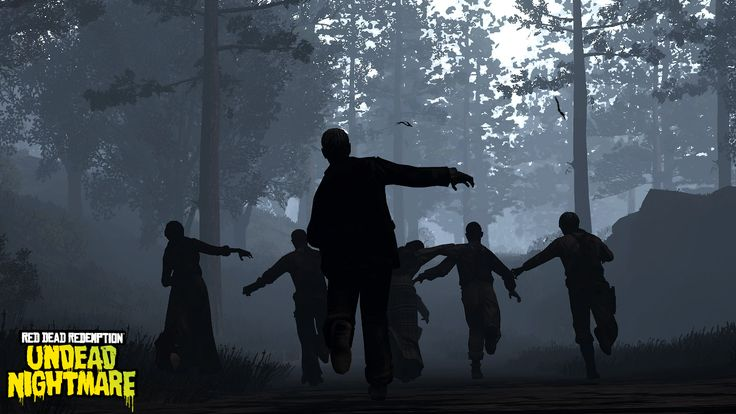 Image result for spooky woods