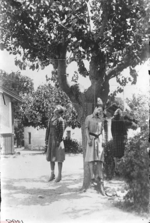 Ano Lechonia, Magnesia, Greece, July 9, 1944. Gestapo and Greek collaborationists (group EASAD) killed 3 women: Lucia (mother, aged 60, on the right), Sophia (daughter, aged 38, in the middle) of the rich family Topali, and Philitsa Kalavrou (their housekeeper, aged 40, on the left).   B/W photo by Kostas ZImeris.