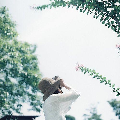 お散歩カメラ。夏。。