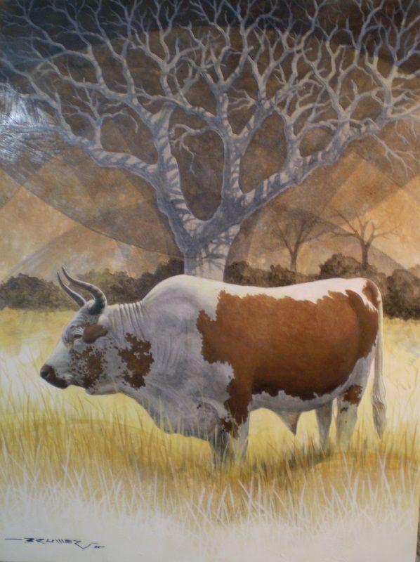 Tyson, Nguni bull - Charl Bruwer