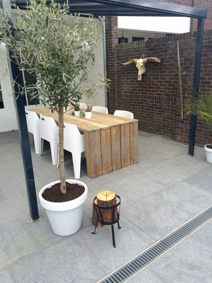 Garden, olivetree, longhorn, swedish torch, cactus, wood..
