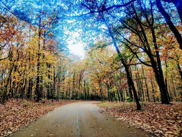 Drumul spre sănătate trece și pe la Fiziohealth. Week-end liniștit vă dorim!