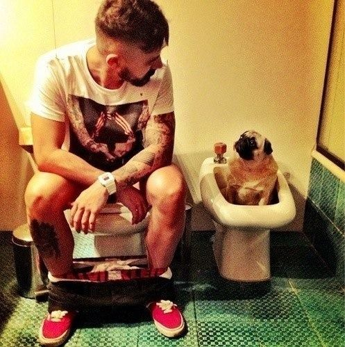 33 best Tattooed men with their pet images on Pinterest Animals