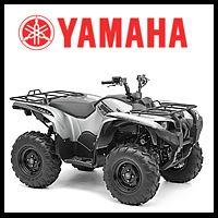 2015 Yamaha ATV for sale.
