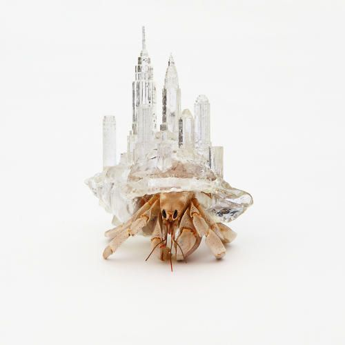 <p>Japanese artist Aki Inomata has been designing architecture for an unlikely client: hermit crabs.</p>