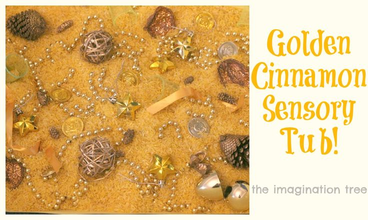 Create a wonderfully scented sensory tub for Christmas play and discovery!    from http://theimaginationtree.com